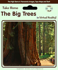 big_trees_cover.jpg